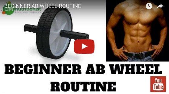 Beginner ab wheel